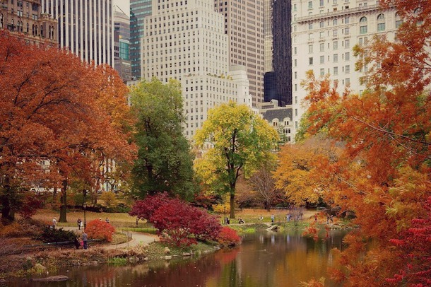 central park automne 2