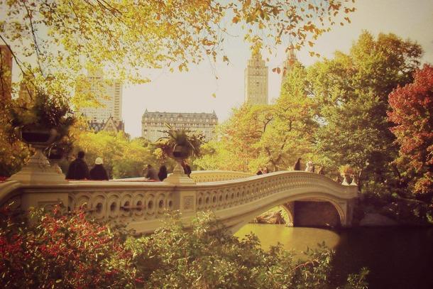 central park automne 3
