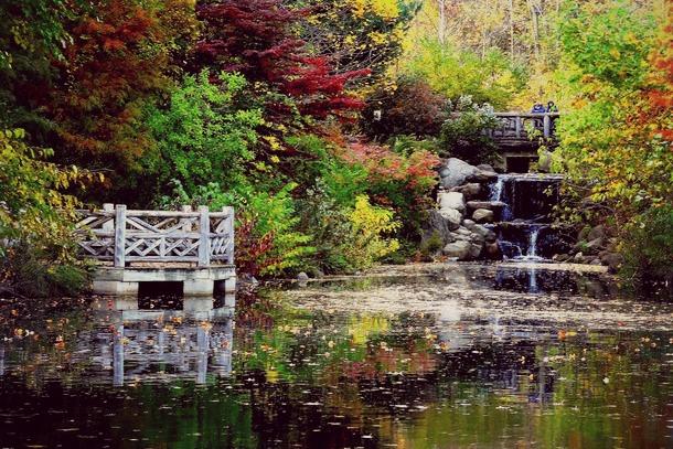 prospect park automne