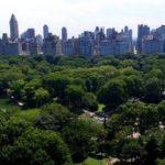 TOP 10 des meilleurs parcs de New York