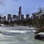 Quels évènements à New York en Janvier 2017?
