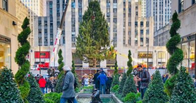 Le sapin de Noël du Rockefeller Center est enfin arrivé !